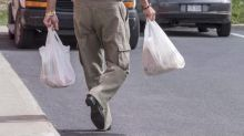Sobeys to remove plastic bags from all stores next year as grocers go green