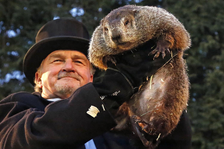 <p>Groundhog Club handler John Griffiths holds Punxsutawney Phil, the weather prognosticating groundhog, during the 131st celebration of Groundhog Day on Gobbler's Knob in Punxsutawney, Pa., Feb. 2, 2017. (AP Photo/Gene J. Puskar) </p>