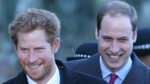 What royal rift? Prince Harry reaches out to Prince William on his birthday