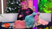 Entertaining the elderly with colourful creatures