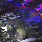 Mystery after 3 young kids found dead in Phoenix home
