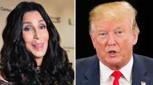 """Cher beschimpft Donald Trump nach Missverständnis als """"Dummkopf mit einem Eidechsengehirn"""""""