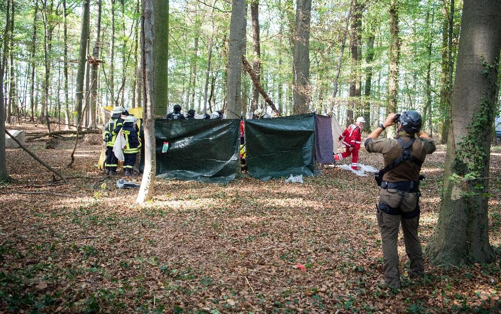 Police erected a screen after a man fell from the trees in Hambach forest on Wednesday