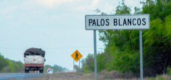 At least 15 people dead after attacks near U.S. border