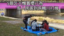 5個乞人憎賞櫻行為 有人誇張到係鴨川打牌