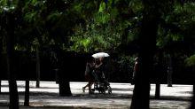 Los espacios verdes evitan muertes prematuras en las ciudades, según estudio