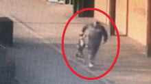 Man banned from keeping animals after shocking footage shows him abusing terrified Staffordshire Bull Terrier