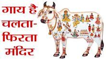 Cow in Hindu Religion