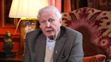 Sir David Attenborough takes on tragic real story of elephant that inspired Disney's Dumbo