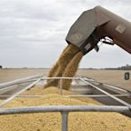 China Halts Some U.S. Farm Imports, Including Soy Beans