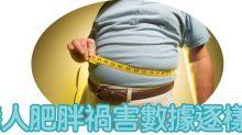 營養師Mian Chan:港人肥胖禍害數據逐樣數
