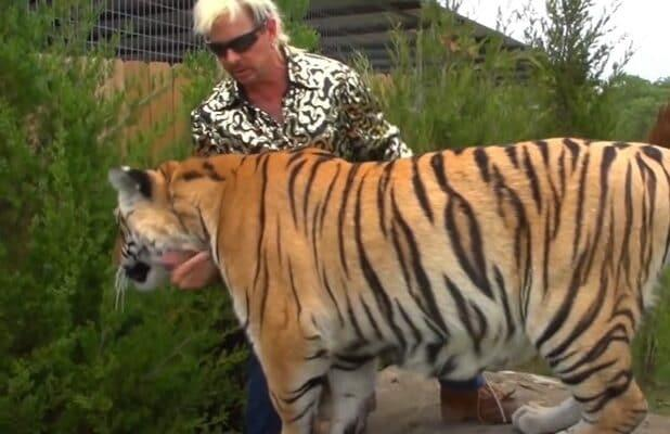 Tiger King Zoo Closed Effectively Immediately Jeff Lowe Says He Is Forfeiting Exhibitor S License