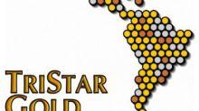 TriStar Gold Files Technical Report in Support of Interim Resource Estimate