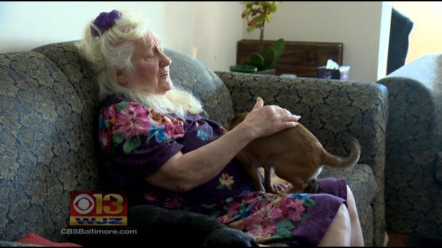 81-Year-Old Great-Grandmother Jailed For 2 Days For Pet Violation