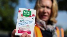 Saint-Louis sucre: Südzucker ferme la porte à une cession des sucreries