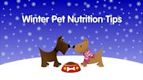 Good Winter Pet Nutrition