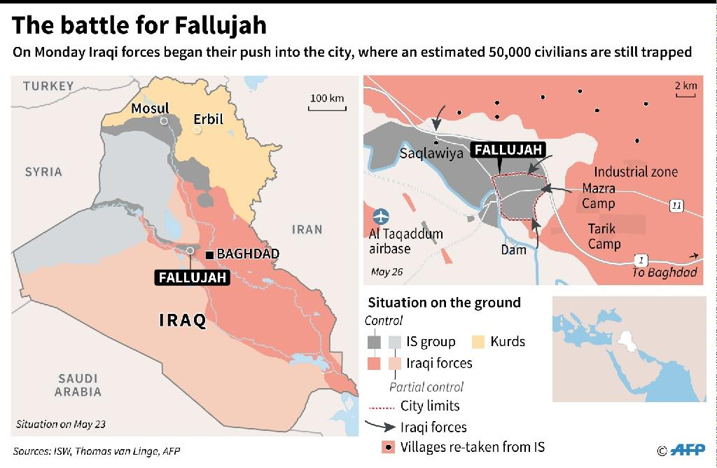 Iraq: the battle for Fallujah (AFP Photo/Valentina BRESCHI, Thomas SAINT-CRICQ)
