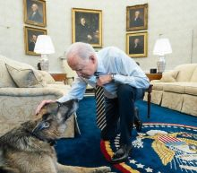 Biden family announces the death of beloved German Shepherd, Champ