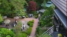 Okutama area in Japan provides beautiful nature