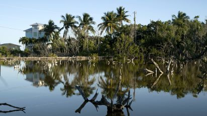Florida Keys show that some places can't be saved