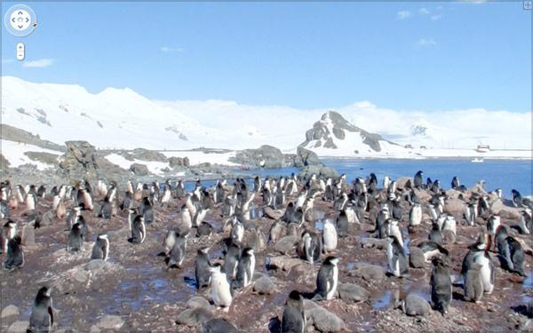Google's Street View goes worldwide, Antarctica and all