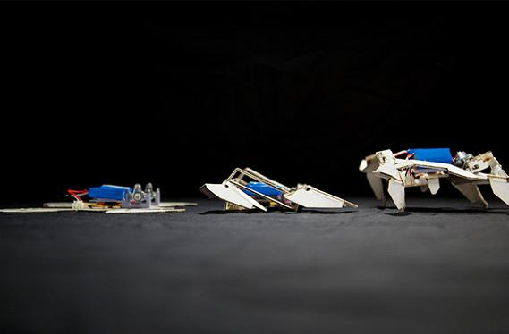 Origami robot doesn't need a human to assemble itself and start working