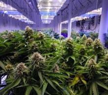Aphria Is Still A High-Risk Cannabis Investment