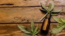 Beauty weltweit: Cannabis wird zum Beauty- und Lifestyleprodukt