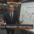 Santelli Exchange: Have rates peaked for the year?