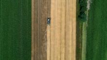 Klöckner: Bauern brauchen Perspektive für die nächsten 50 Jahre