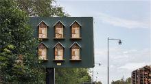 McDonald´s convierte sus vallas publicitarias en casas para abejas