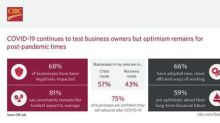 Two thirds of Canadian business owners negatively impacted by COVID-19, most say area businesses are in crisis mode: CIBC Poll