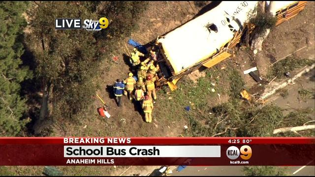 School Bus Filled With Children Crashes Into Tree At Anaheim Golf
