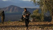 Pro-Assad militias to enter Syria's Afrin: state media