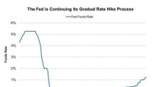 Is Softer Inflation Reducing the Fear of an Aggressive Rate Hike?