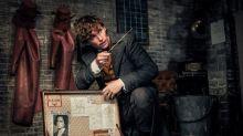 10 coisas para saber antes de ver 'Animais Fantásticos: Os Crimes de Grindelwald'