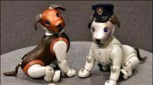 Paw Patrol: Sonys neuer Roboterhund soll Familienmitglieder überwachen