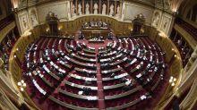 L'ouverture à la PMA pour toutes les femmes franchit une nouvelle étape au Sénat