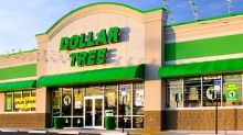 Why Dollar Tree, Inc. Stock Plunged Today