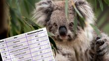 The surprising list of animals hiding in our cities which face extinction