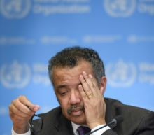 Expect 'lengthy' coronavirus pandemic, warns WHO