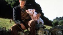 """""""Schweinchen Babe""""-Darsteller James Cromwell muss ins Gefängnis"""