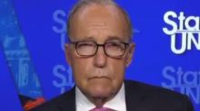Trump's top economic adviser seems to be confused about new executive orders in cringeworthy interview