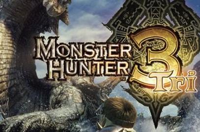 Monster Hunter Tri players have spent millions of hours hunting monsters