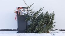 Five eco-friendly ways to get rid of your Christmas tree