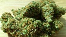Cannabis Sector: Mixed Bag Last Week