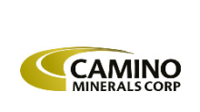 Camino Announces Appointment to the Board
