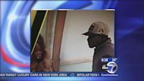 Police search for 'twerking' burglars