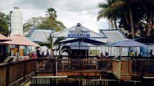 天涯海角好風光 Key West:美國最南端的渡假天堂