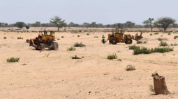 Protecting the environment in Senegal? There's an app for that